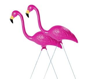 The classy Flamingo
