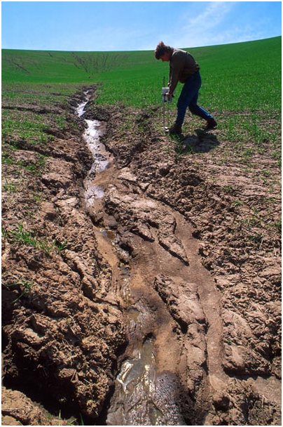 Current issue – Soil erosion and land degradation | Environmental ...