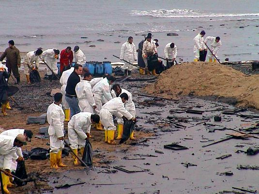 Oil Effect on The Environment Effect of bp Oil Spill