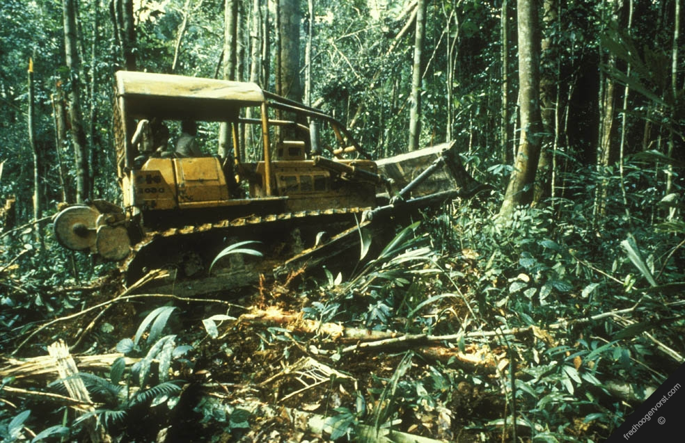 the destruction of the rain forests The destruction of the rainforests will affect other ecosystems throughout  but we now know more about the important role that forests, especially rainforests play.