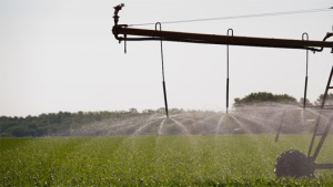 Irrigation_m_0827