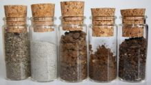 BRESSAN_Soil_Samples