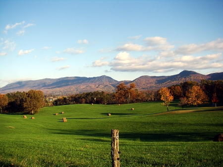 worth-road-farm-sevier-county-tennessee-large.jpg