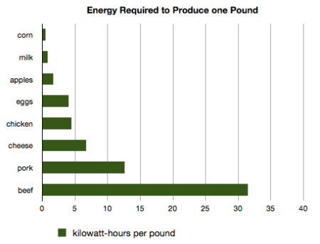 energy-required-to-produce-one-pound1