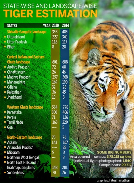 Tiger numbers