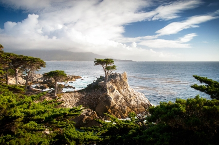 02-lone-cypress-pebble-beach.jpg