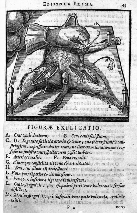 Bad-Medicine-Doctors-Doing-Harm-since-Hippocrates_page122_image1.jpg